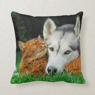 Cojín Decorativo Grupo lindo gato y de los amigos somalíes del