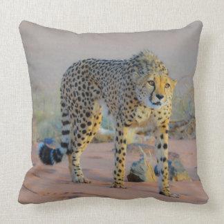 Cojín Decorativo Humor del guepardo