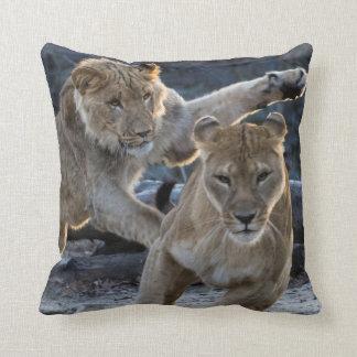 Cojín Decorativo Juegos jovenes del león con la mamá