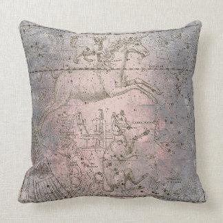 Cojín Decorativo La galaxia gris caliente color de rosa rosada del