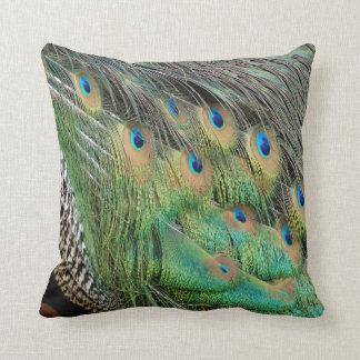 Cojín Decorativo Las plumas del pavo real broncean colores verdes y
