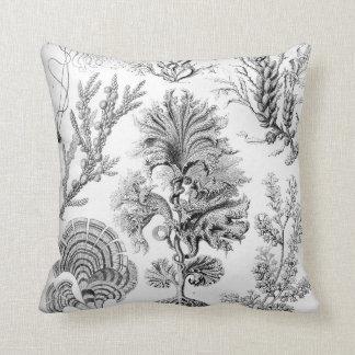Cojín Decorativo ¡Malas hierbas de Ernst Haeckel Fucoideae!