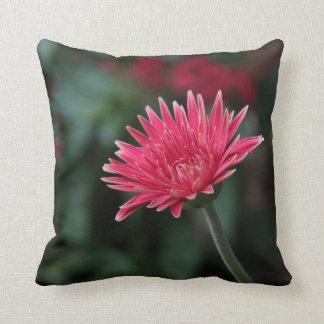 Cojín Decorativo Margarita rosada viva del Gerbera en fondo verde