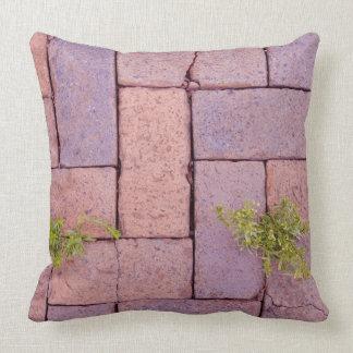 Cojín Decorativo Piedras y malas hierbas de pavimentación en la
