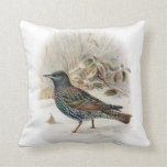 Cojín Decorativo Starling común hermoso