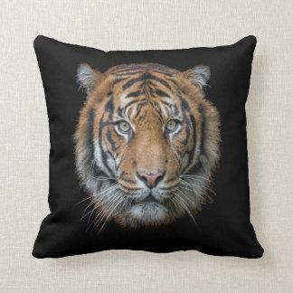 Cojín Decorativo Una cara salvaje del tigre de Bengala