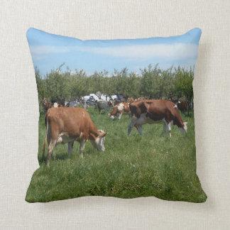 Cojín Decorativo Vacas en el pasto