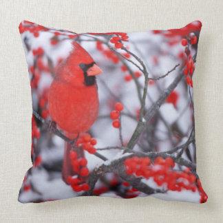 Cojín Decorativo Varón cardinal septentrional, invierno, IL