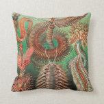 Cojín Decorativo Worms, Annelids Chaetopoda por Ernst Haeckel