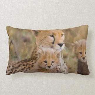 Cojín Lumbar Familia del guepardo