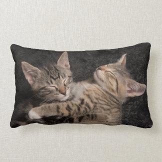Cojín Lumbar Gatos del bebé el dormir