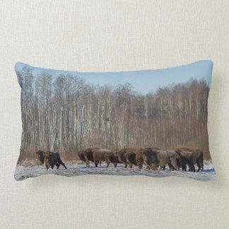 Cojín Lumbar Manada del bisonte