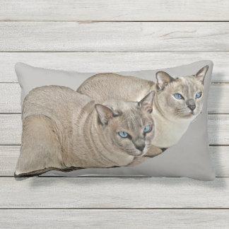 Cojín Lumbar Observación de los gatos de Tonkinese (almohada al
