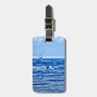 Cola y barco de la ballena en el horizonte con las etiqueta para maletas