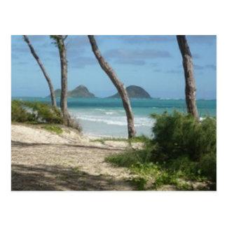 COLECCIÓN DE LA HAWAIANA DE HAWAII POSTAL