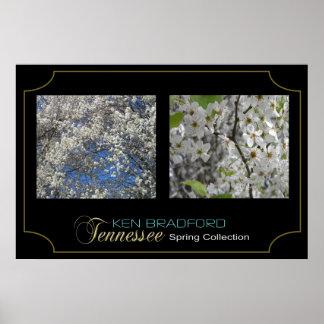Colección de la primavera de Tennessee - Ken Póster