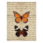 Colección de las mariposas del vintage postales