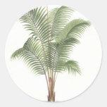 Colección del ejemplo de la palmera pegatina redonda