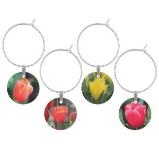 Colección del encanto del vino de los tulipanes de identificador de copa