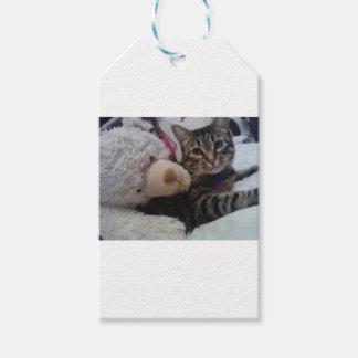 Colección del gatito etiquetas para regalos