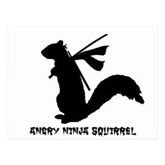 Colección enojada de la ardilla de Ninja Postal