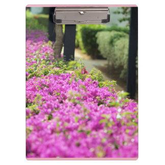 colección floral carpeta de pinza