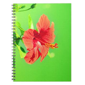 colección floral. Hibisco Cuaderno