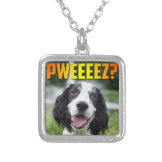 Colgante del premio del perrito del perro de aguas