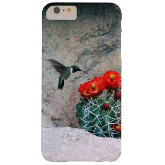 Colibrí del desierto funda barely there iPhone 6 plus