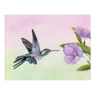 Colibrí en la postal del arte del pájaro de la