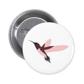 Colibrí rosado hermoso