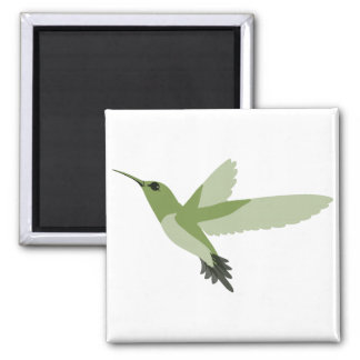Colibrí verde hermoso imán