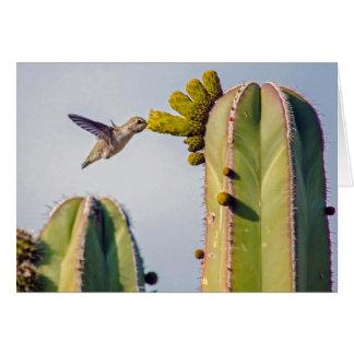 Colibrí y cactus Notecard Tarjeta Pequeña