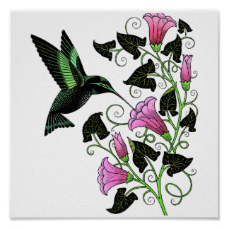 Colibrí y flores bonitos póster