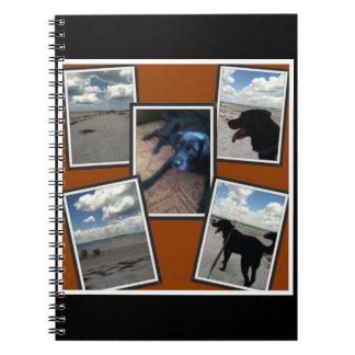 collage adorable de fotos de la playa y del perro libro de apuntes con espiral
