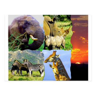 Collage africano postal