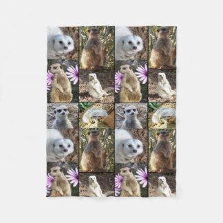 Collage de la foto de Meerkat, pequeña manta del