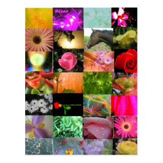 Collage de la variedad postal