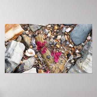 Collage del Beachcomber Póster