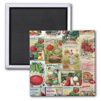 Collage del catálogo de la fruta y de semilla de imán