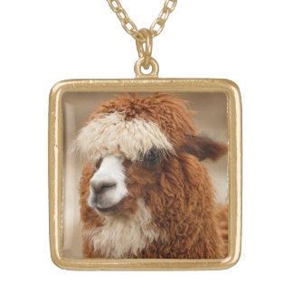 Collar de la alpaca