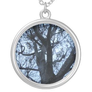 Collar de la fotografía de la silueta del árbol