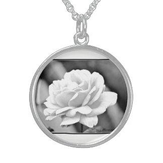 Collar de la plata esterlina del rosa blanco