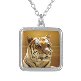 Collar del colgante del tigre