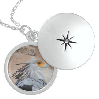 Collar del Locket de la plata de secretaria pájaro
