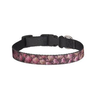 Collar Para Mascotas Fractal rosado