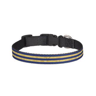 Collar Para Mascotas Hoja de oro elegante y modelo de la raya azul