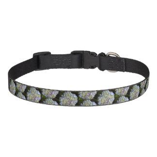Collar Para Mascotas Medio del cuello de perro - Hydrangea azul