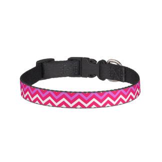 Collar Para Mascotas Modelo ondulado rosado y rojo de la tarjeta del