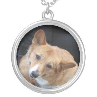 Collar personalizado amor adolescente del perro